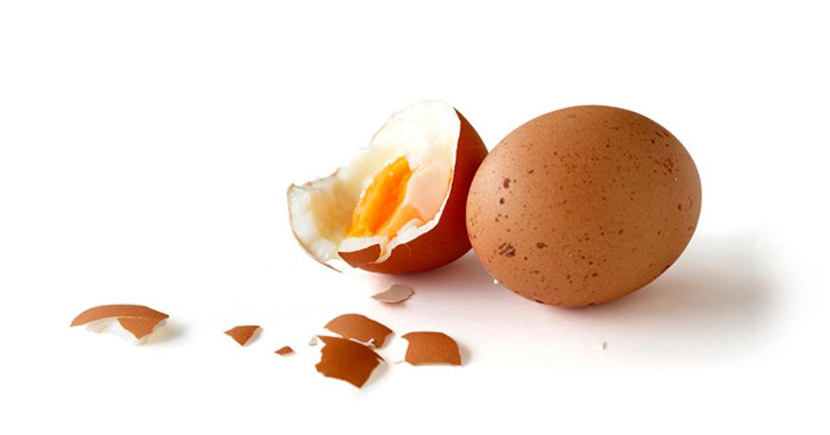 Kananmuna Proteiini