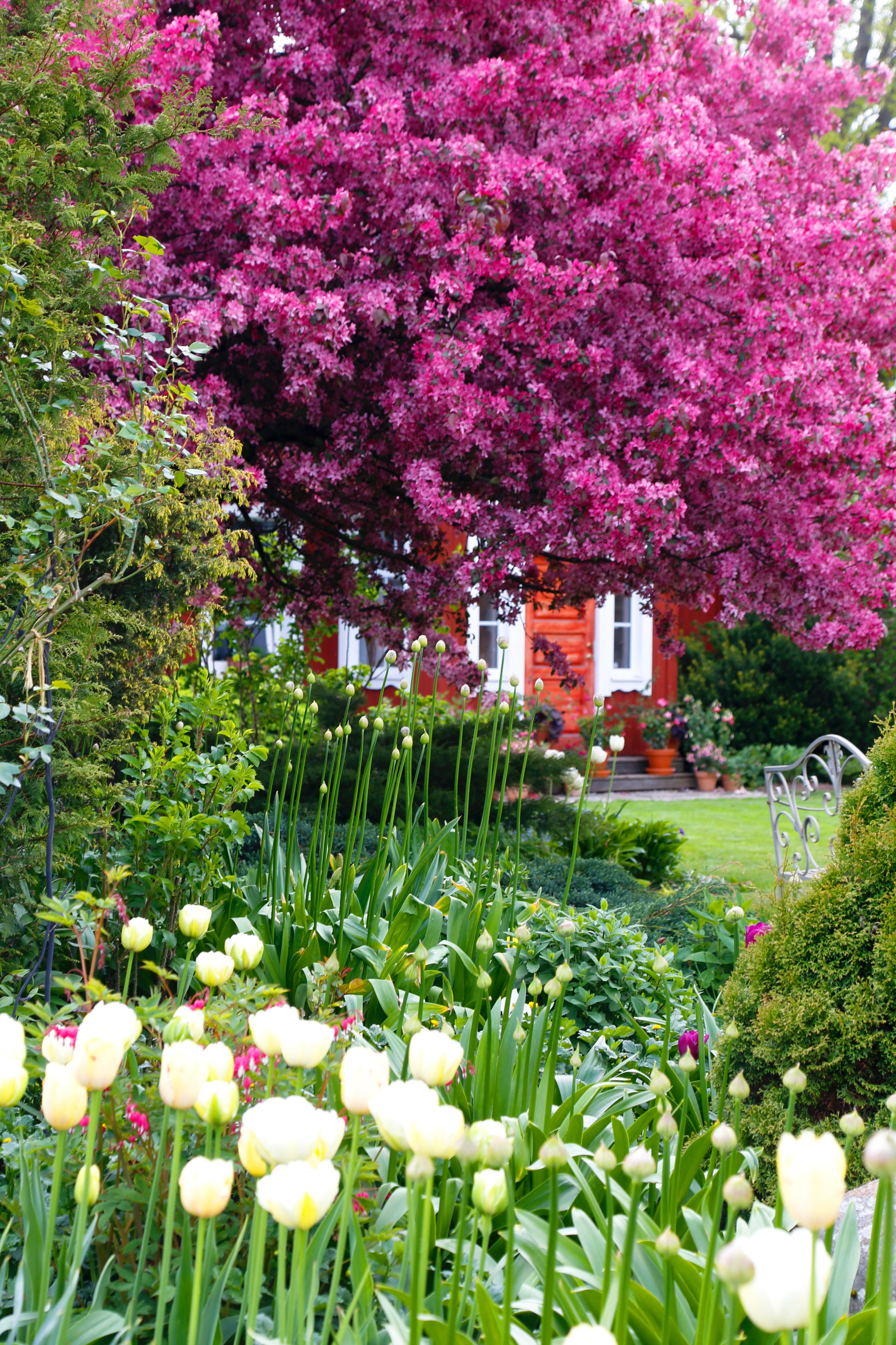 Kaikki asumisesta, sisustamisesta, ruoasta ja puutarhasta